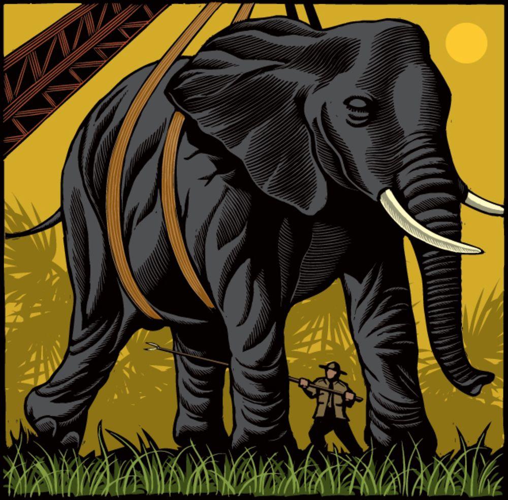 pop-sci-elephant