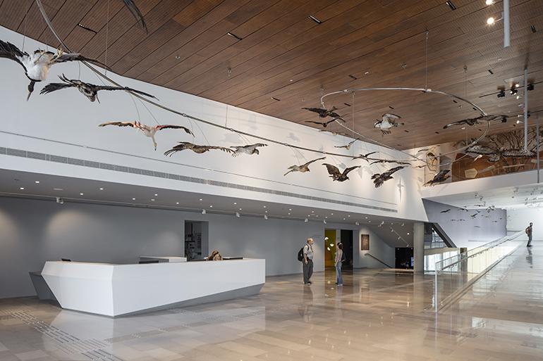 ID-Steinhardt-Museum-Tel-Aviv-University-Kimmel-Eshkolot-interior